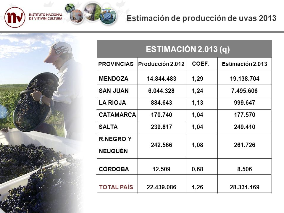 ESTIMACIÓN 2.013 (q) MENDOZA SAN JUAN LA RIOJA CATAMARCA SALTA R.NEGRO Y NEUQUÉN CÓRDOBA TOTAL PAÍS Estimación de producción de uvas 2013 PROVINCIAS 14.844.483 6.044.328 884.643 170.740 239.817 242.566 12.509 22.439.086 Producción 2.012 1,29 1,24 1,13 1,04 1,08 0,68 1,26 COEF.