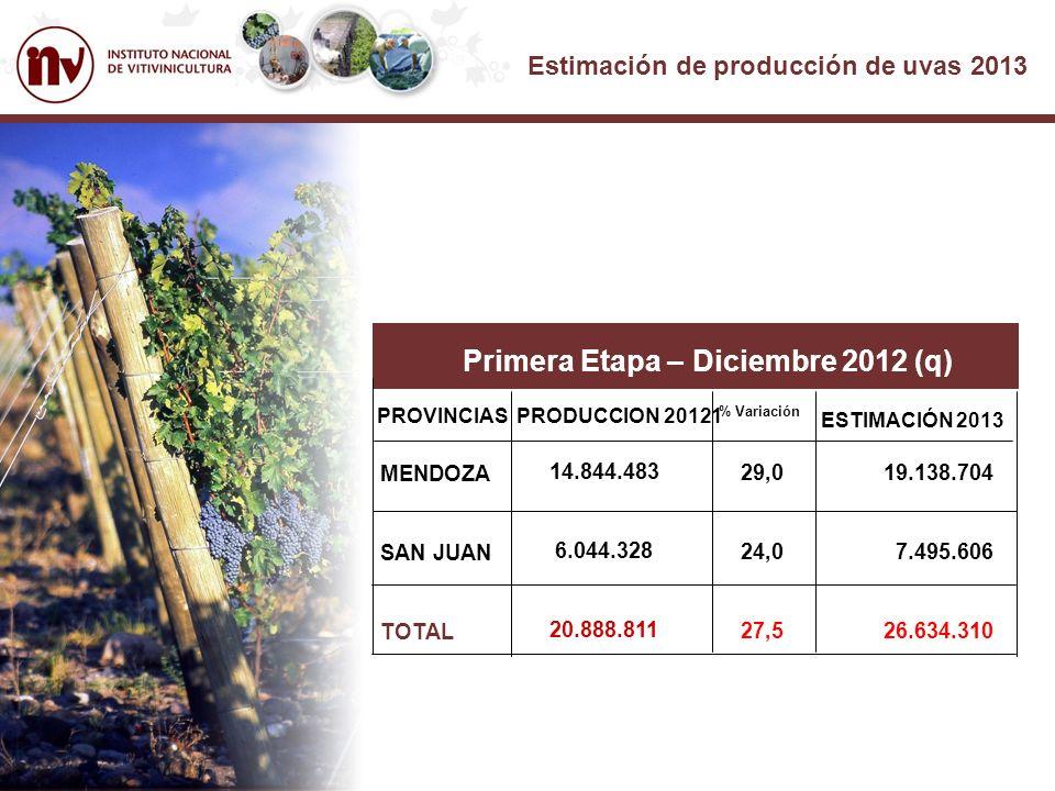 Estimación de producción de uvas 2013 Primera Etapa – Diciembre 2012 (q) PROVINCIASPRODUCCION 20121 % Variación MENDOZA SAN JUAN TOTAL 14.844.483 6.044.328 20.888.811 29,0 24,0 27,5 19.138.704 7.495.606 26.634.310 ESTIMACIÓN 2013