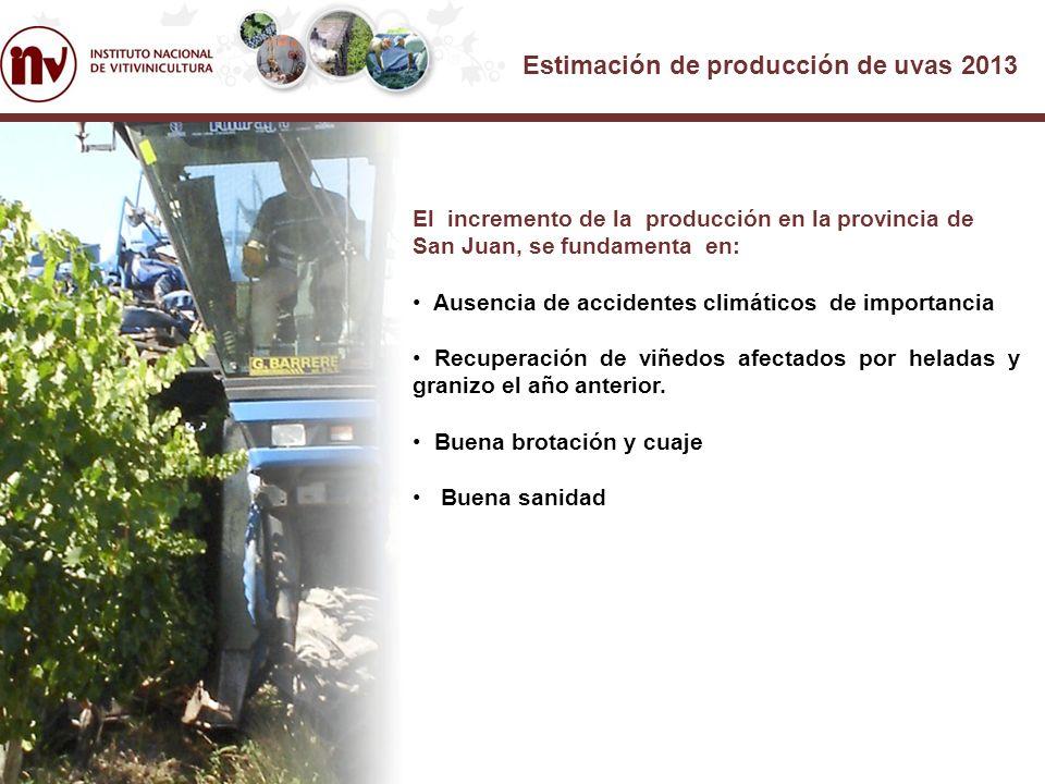 Estimación de producción de uvas 2013 El incremento de la producción en la provincia de San Juan, se fundamenta en: Ausencia de accidentes climáticos de importancia Recuperación de viñedos afectados por heladas y granizo el año anterior.