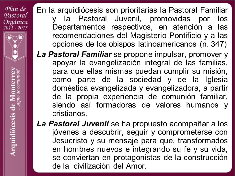 En la arquidiócesis son prioritarias la Pastoral Familiar y la Pastoral Juvenil, promovidas por los Departamentos respectivos, en atención a las recom