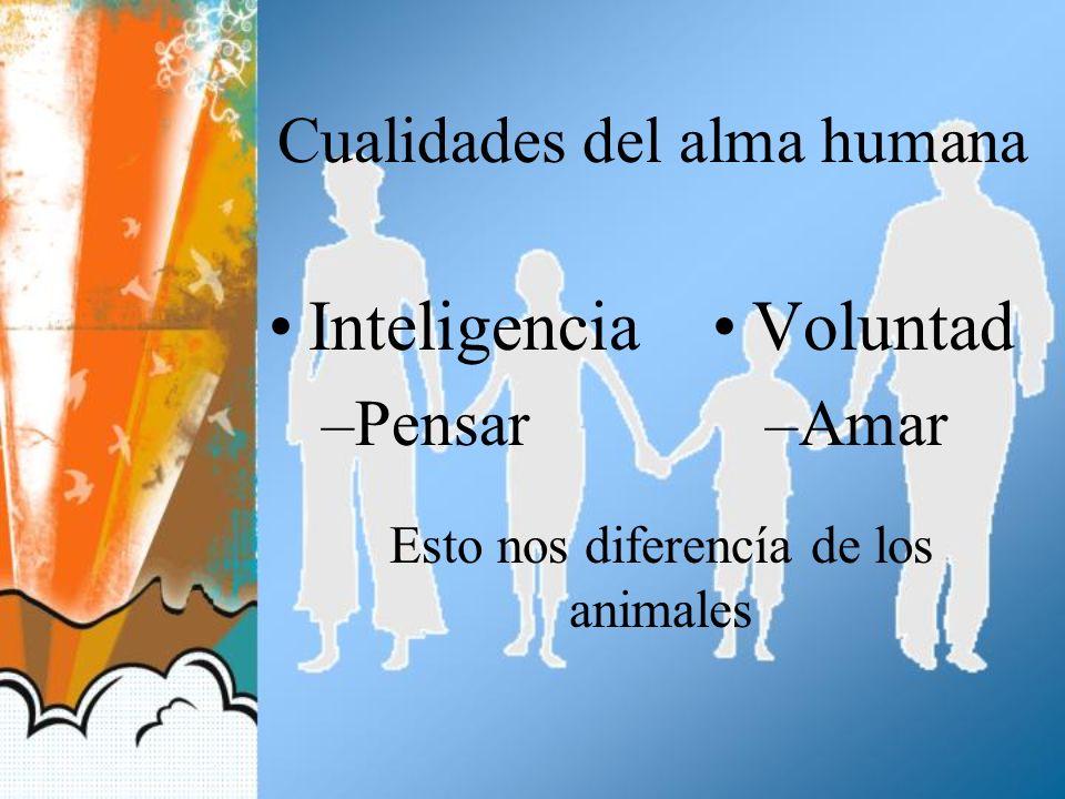 Cualidades del alma humana Inteligencia –Pensar Voluntad –Amar Esto nos diferencía de los animales