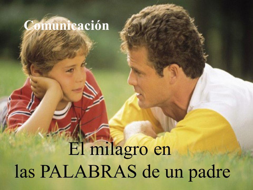 El milagro en las PALABRAS de un padre Comunicación