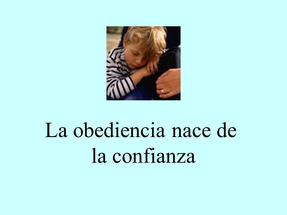 La obediencia nace de la confianza