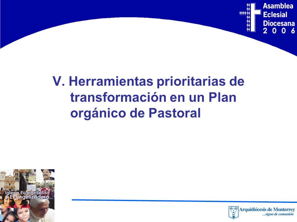 V. Herramientas prioritarias de transformación en un Plan orgánico de Pastoral