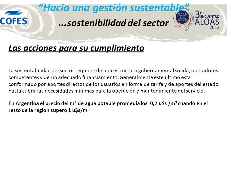 Hacia una gestión sustentable … sostenibilidad del sector Las acciones para su cumplimiento La sustentabilidad del sector requiere de una estructura g