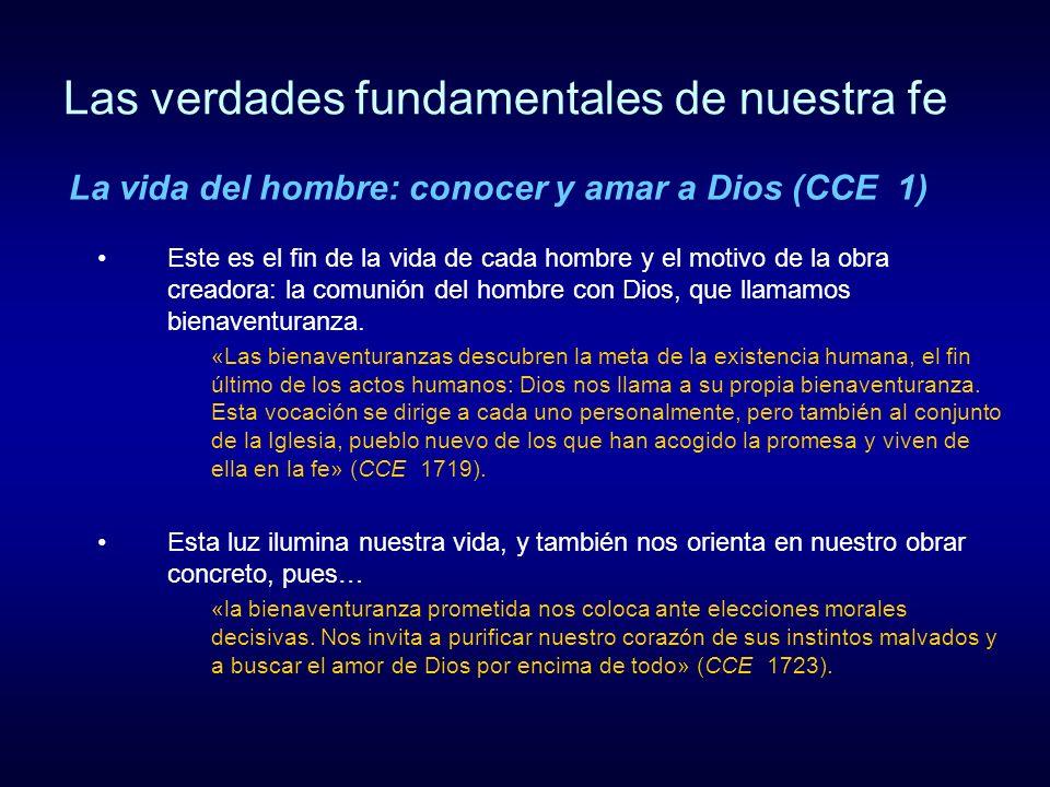 Las verdades fundamentales de nuestra fe Este es el fin de la vida de cada hombre y el motivo de la obra creadora: la comunión del hombre con Dios, qu