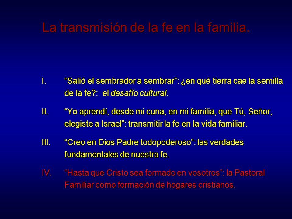 ¿Qué se entiende por Pastoral Familiar.