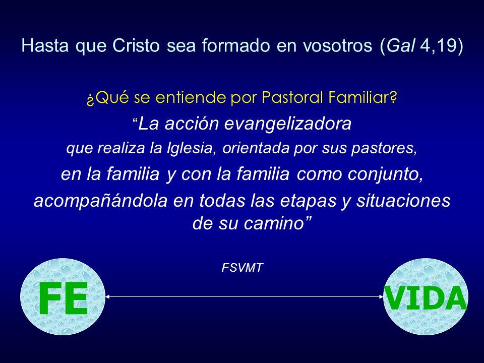 ¿Qué se entiende por Evangelizar.La acción evangelizadora....
