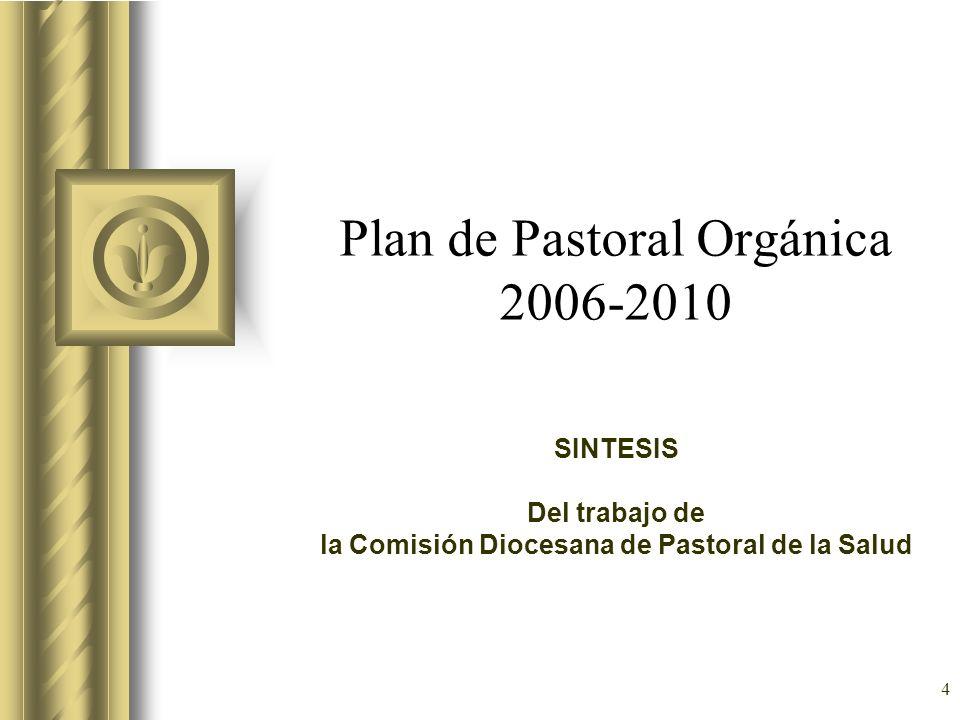 4 Plan de Pastoral Orgánica 2006-2010 SINTESIS Del trabajo de la Comisión Diocesana de Pastoral de la Salud