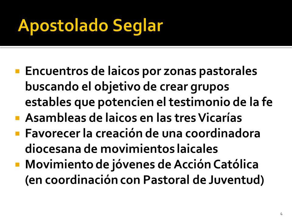 Encuentros de laicos por zonas pastorales buscando el objetivo de crear grupos estables que potencien el testimonio de la fe Asambleas de laicos en la