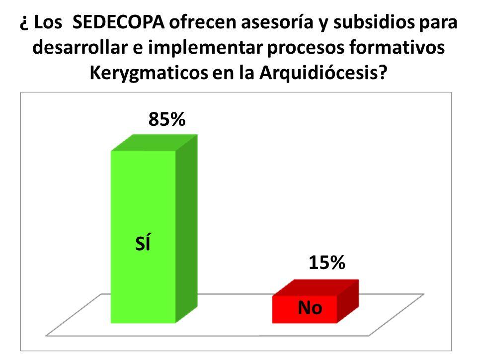 ¿ Los SEDECOPA ofrecen asesoría y subsidios para desarrollar e implementar procesos formativos Kerygmaticos en la Arquidiócesis? SÍ No 85% 15%