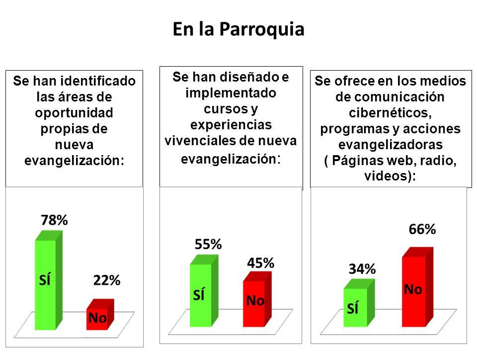 Se han identificado las áreas de oportunidad propias de nueva evangelización: Se han diseñado e implementado cursos y experiencias vivenciales de nuev