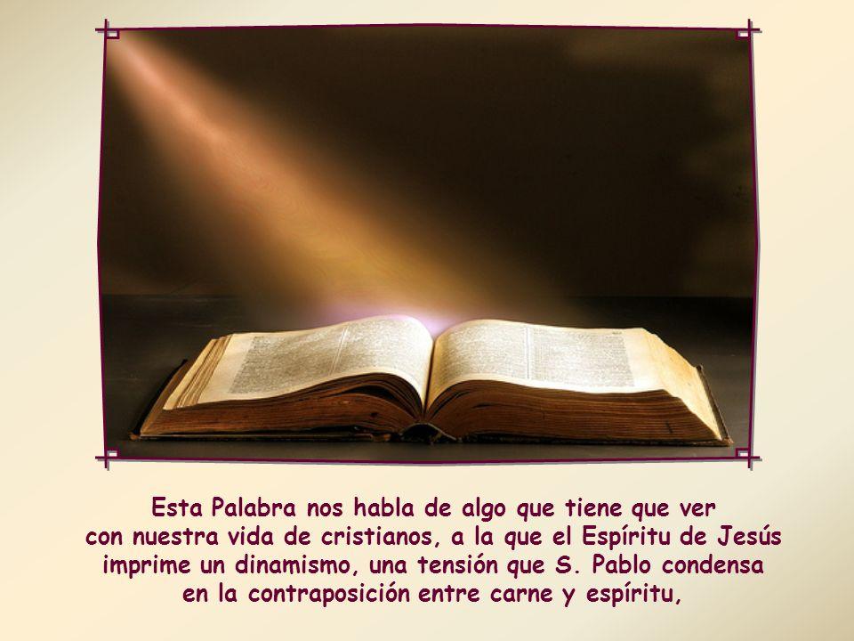 «Los que se dejan conducir por el Espíritu de Dios, esos son hijos de Dios» (Rm 8,14).
