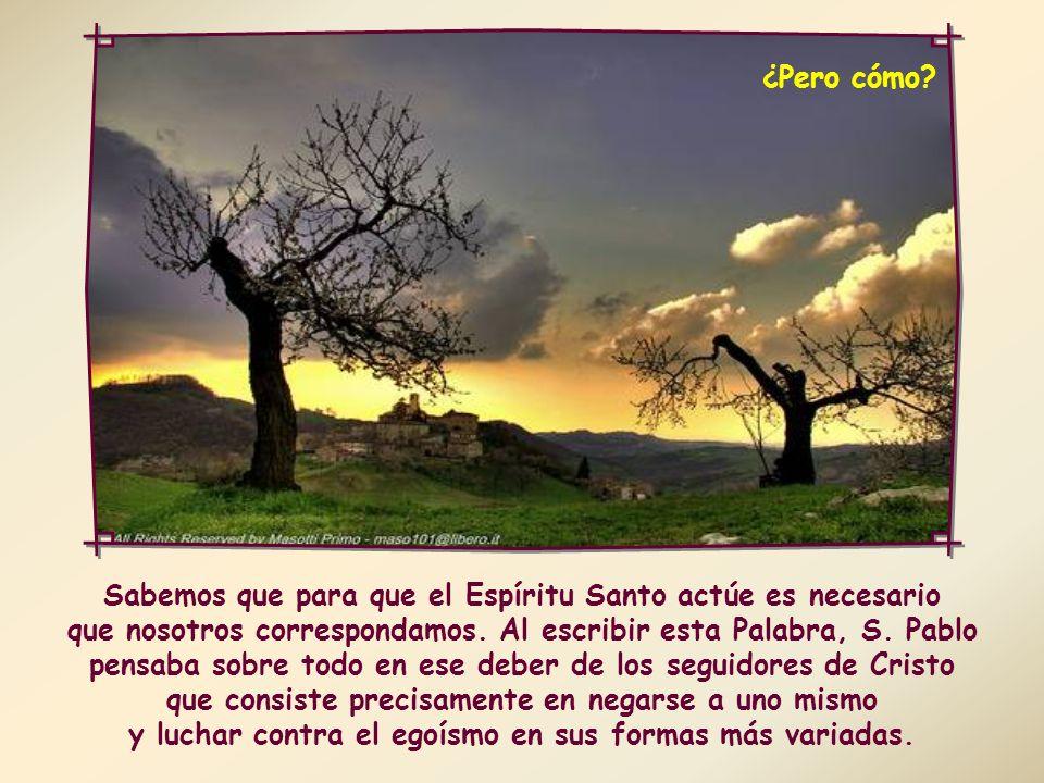 En efecto, los que se dejan conducir por el Espíritu deben librar cada día el «buen combate de la fe» para poder doblegar todas las inclinaciones al mal y vivir según la fe profesada en el bautismo.