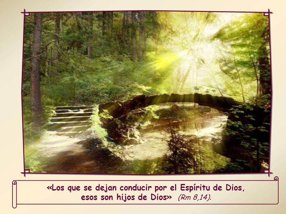 Al dejar más libre al Espíritu Santo, que está en nuestros corazones, Él podrá prodigarnos sus dones con mayor abundancia y podrá guiarnos por el camino de la vida.