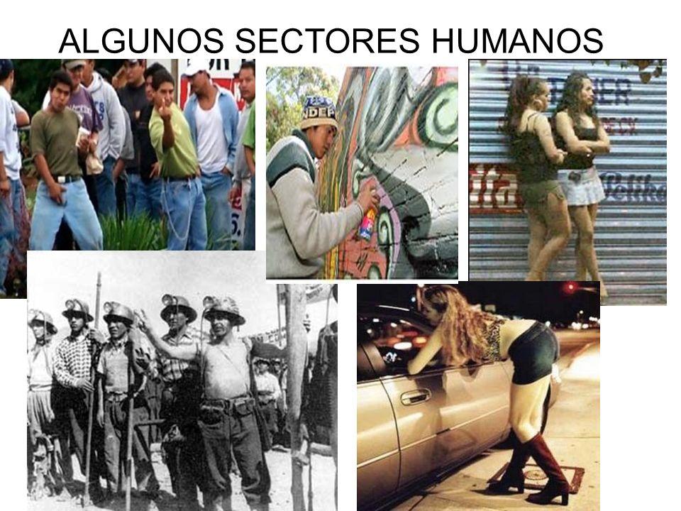 ALGUNOS SECTORES HUMANOS