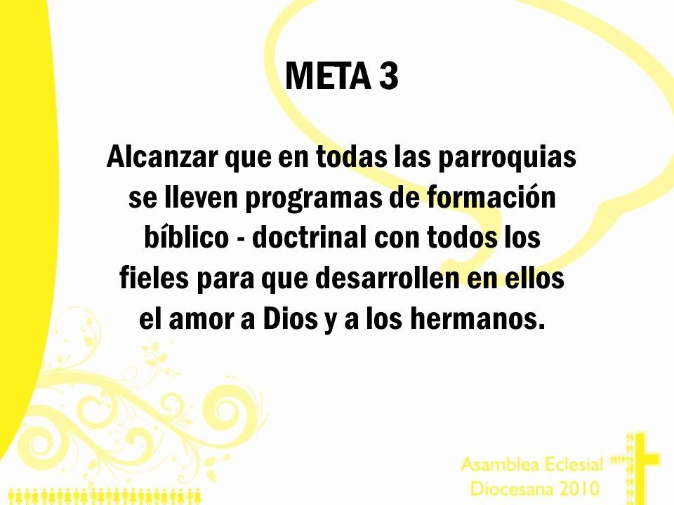 META 3 Alcanzar que en todas las parroquias se lleven programas de formación bíblico - doctrinal con todos los fieles para que desarrollen en ellos el