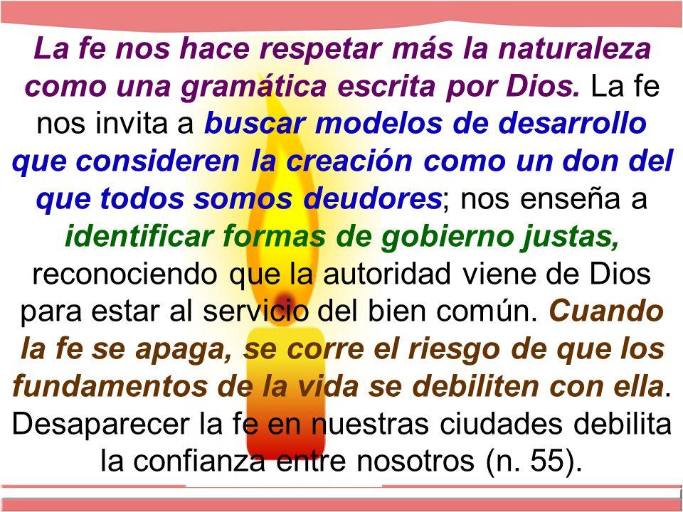 La fe nos hace respetar más la naturaleza como una gramática escrita por Dios.