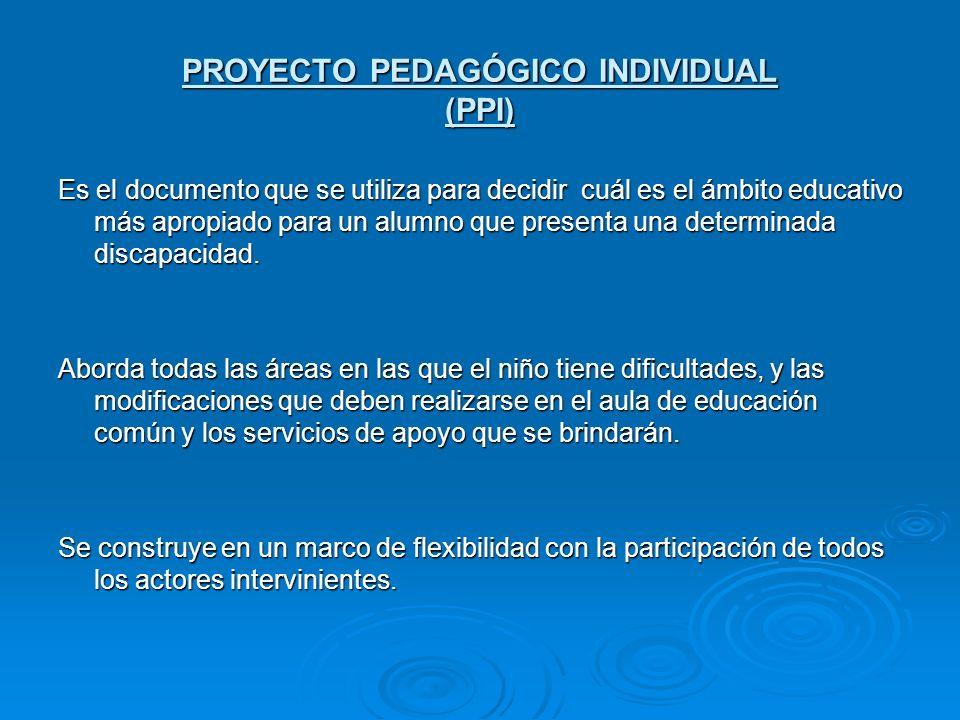 PROYECTO PEDAGÓGICO INDIVIDUAL (PPI) Es el documento que se utiliza para decidir cuál es el ámbito educativo más apropiado para un alumno que presenta