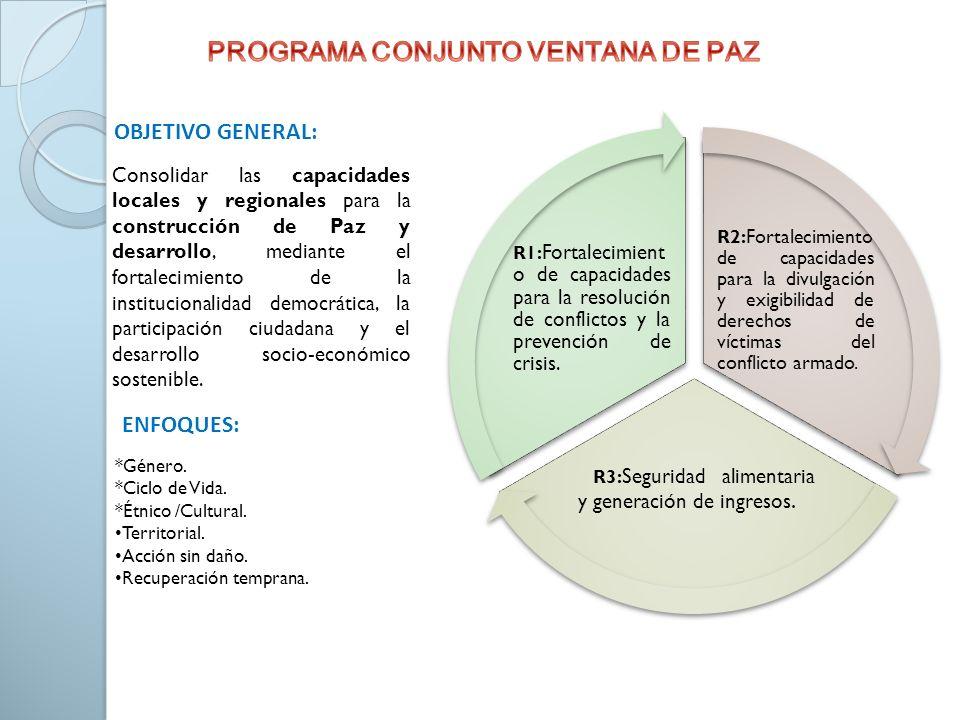 Consolidar las capacidades locales y regionales para la construcción de Paz y desarrollo, mediante el fortalecimiento de la institucionalidad democrát