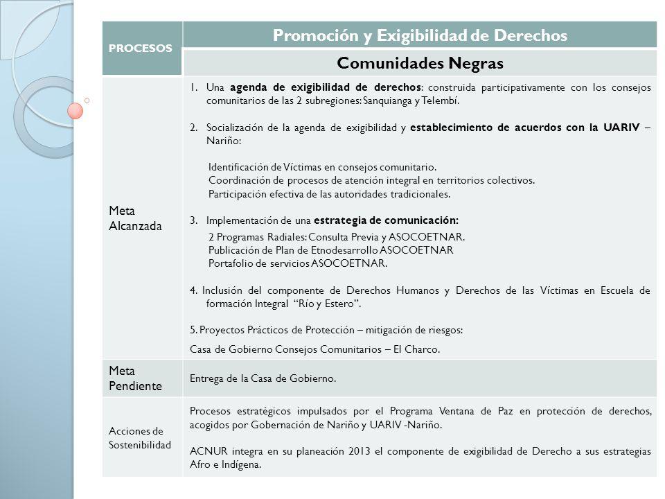 PROCESOS Promoción y Exigibilidad de Derechos Comunidades Negras Meta Alcanzada 1.Una agenda de exigibilidad de derechos: construida participativament