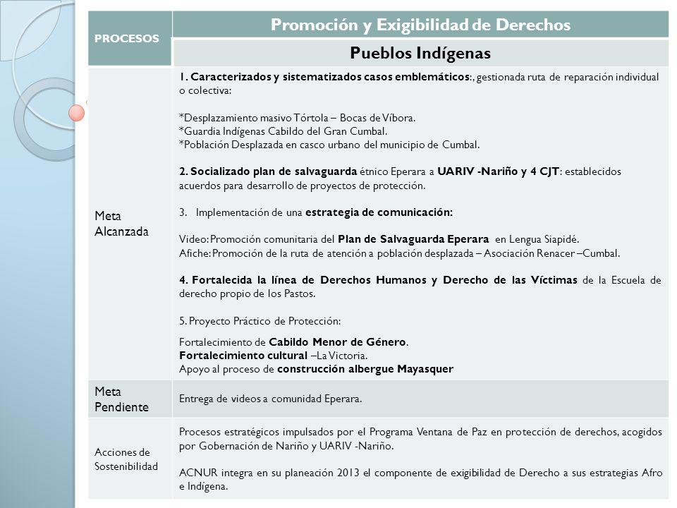 PROCESOS Promoción y Exigibilidad de Derechos Pueblos Indígenas Meta Alcanzada 1. Caracterizados y sistematizados casos emblemáticos:, gestionada ruta