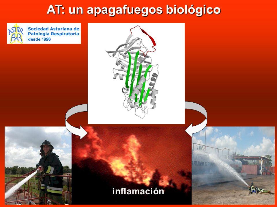 AT: un apagafuegos biológico inflamación
