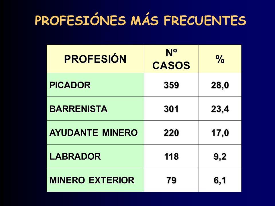 PROFESIÓNES MÁS FRECUENTES PROFESIÓN Nº CASOS % PICADOR35928,0 BARRENISTA30123,4 AYUDANTE MINERO 22017,0 LABRADOR1189,2 MINERO EXTERIOR 796,1
