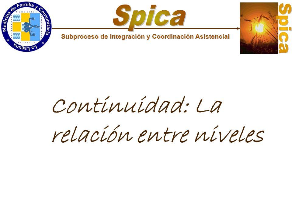 Subproceso de Integración y Coordinación Asistencial Continuidad: La relación entre niveles