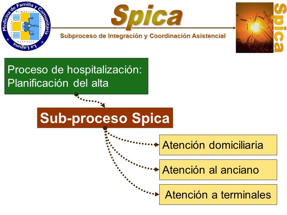 Sub-proceso Spica Atención domiciliaria Atención al anciano Atención a terminales Proceso de hospitalización: Planificación del alta Subproceso de Int