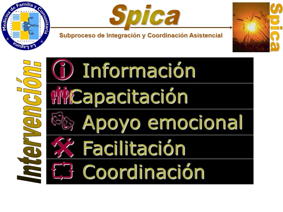 Información Información Capacitación Capacitación Apoyo emocional Apoyo emocional Facilitación Facilitación Coordinación Coordinación Subproceso de In