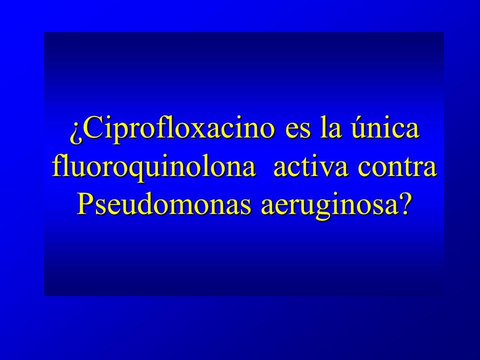 Levofloxacino y Pseudomonas levofloxacin ciprofloxacin The antibacterial efficacy of levofloxacin and ciprofloxacin against Pseudomonas aeruginosa assessed by combining antibiotic exposure and bacterial susceptibility.