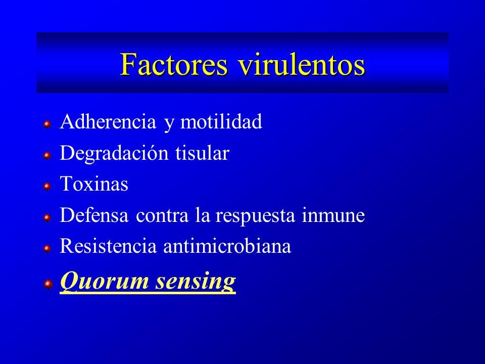 Factores virulentos Adherencia y motilidad Degradación tisular Toxinas Defensa contra la respuesta inmune Resistencia antimicrobiana Quorum sensing
