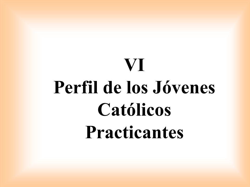VI Perfil de los Jóvenes Católicos Practicantes