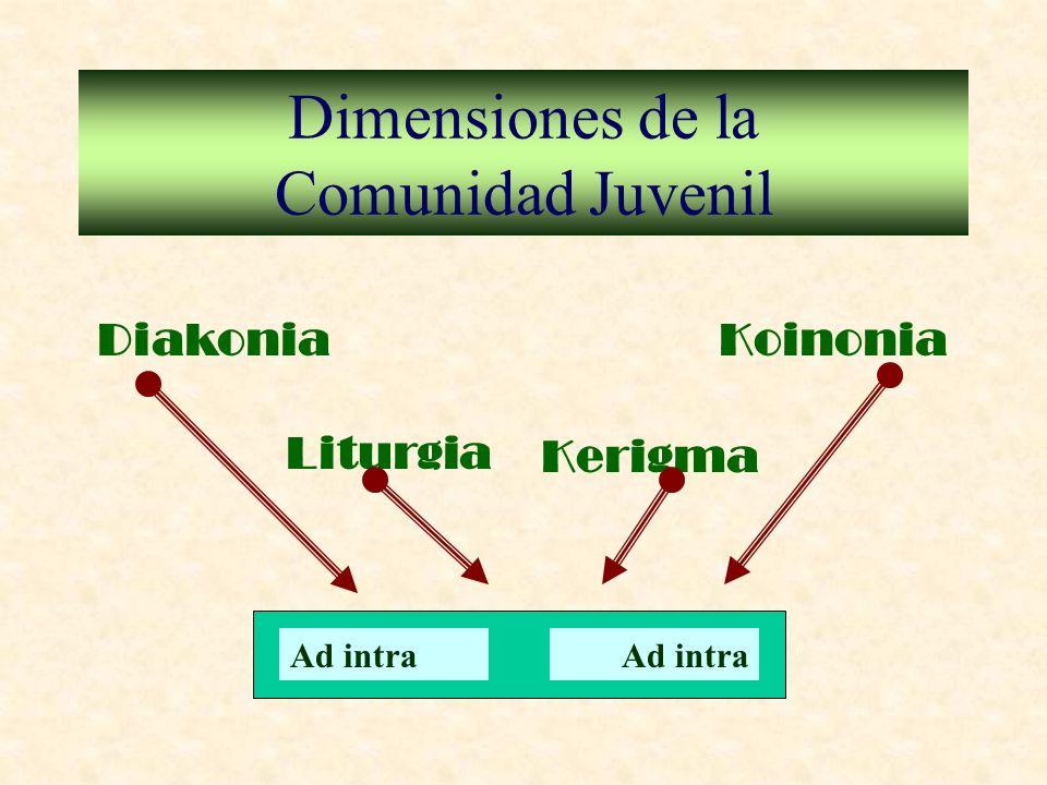 Dimensiones de la Comunidad Juvenil Diakonia Liturgia Kerigma Koinonia Ad intra