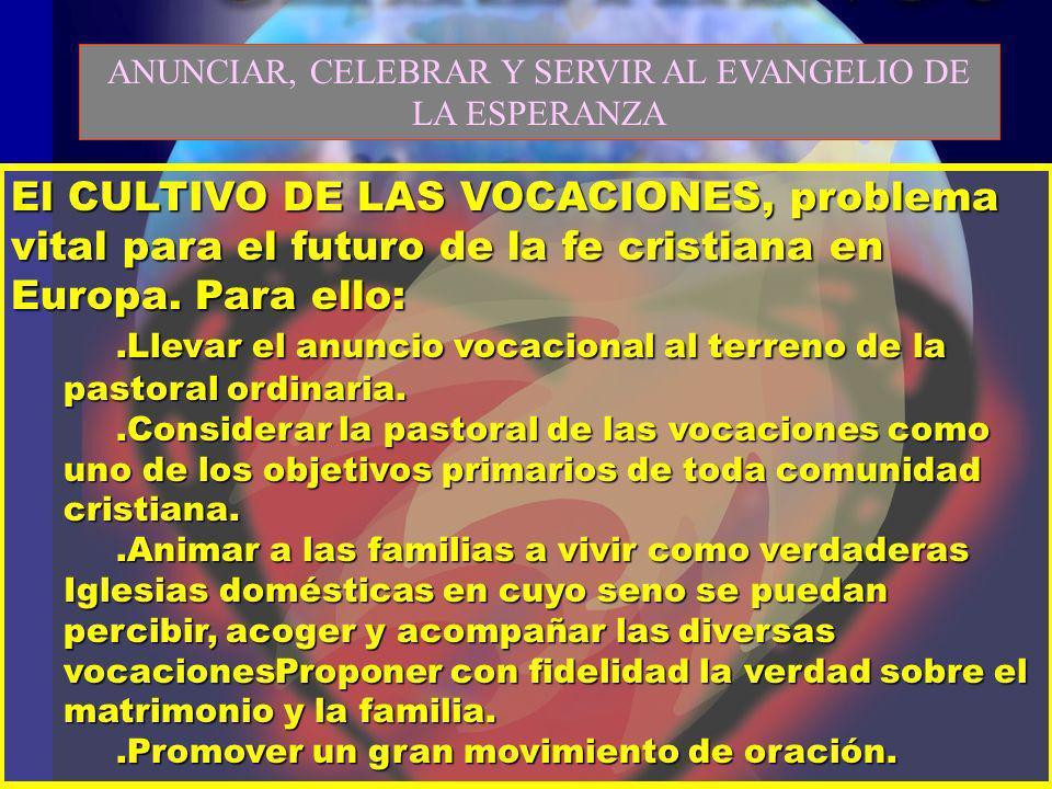 El CULTIVO DE LAS VOCACIONES, problema vital para el futuro de la fe cristiana en Europa. Para ello:.Llevar el anuncio vocacional al terreno de la pas