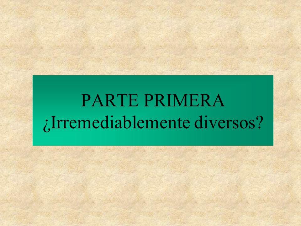La Diócesis Comunidad de Comunidades Carismáticas llamada a vivir la diversidad como riqueza.