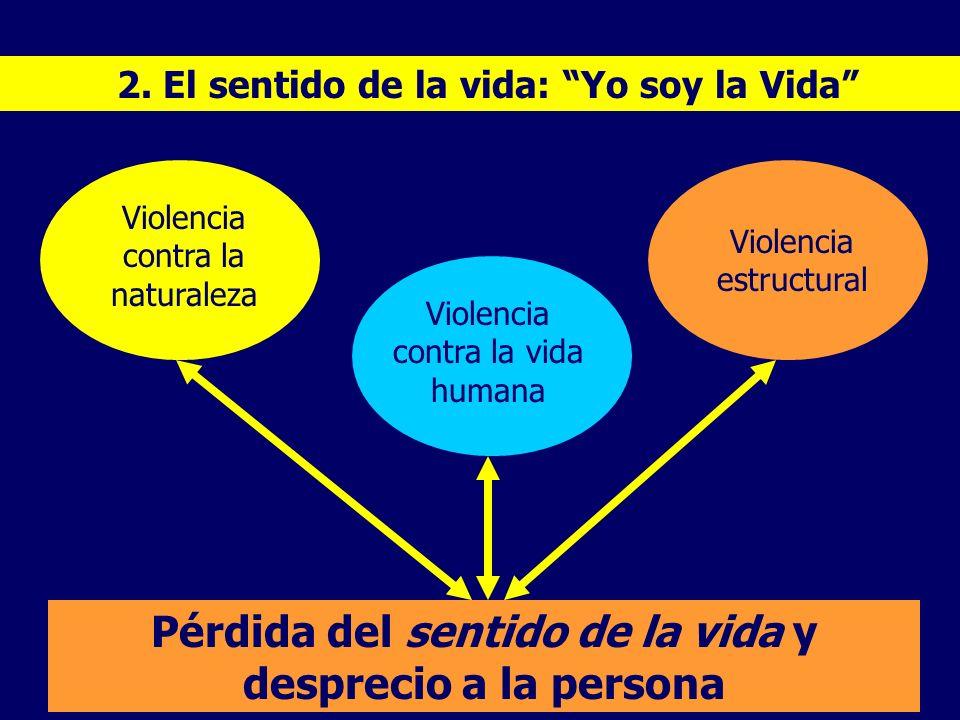 2. El sentido de la vida: Yo soy la Vida Pérdida del sentido de la vida y desprecio a la persona Violencia contra la naturaleza Violencia contra la vi