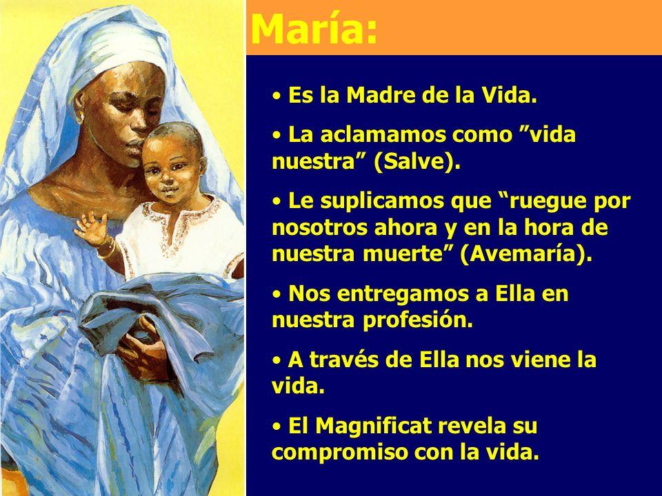 Es la Madre de la Vida. La aclamamos como vida nuestra (Salve). Le suplicamos que ruegue por nosotros ahora y en la hora de nuestra muerte (Avemaría).
