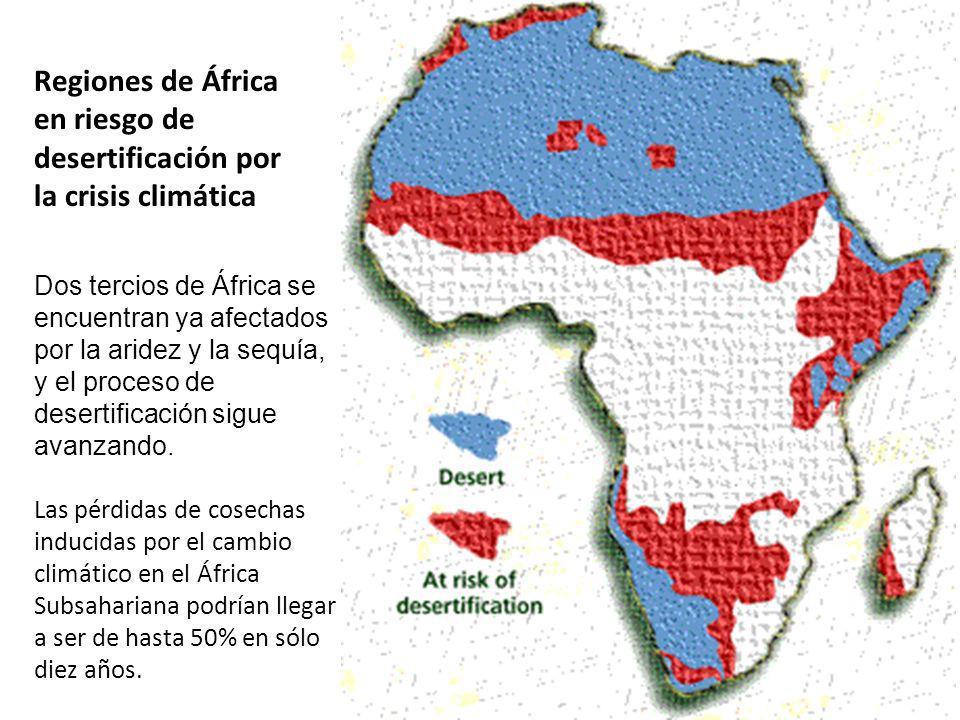 Regiones de África en riesgo de desertificación por la crisis climática Dos tercios de África se encuentran ya afectados por la aridez y la sequía, y