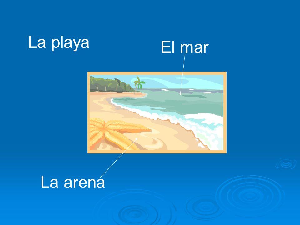 El mar La arena La playa