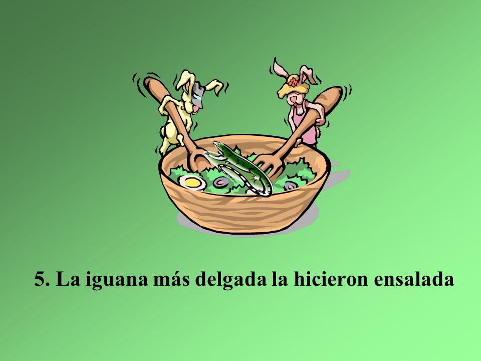 Y ahora en las montañas, hay sólo tres iguanas