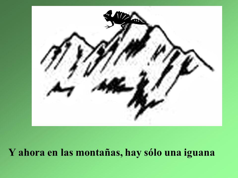6. La iguana más bonita le mató la abuelita