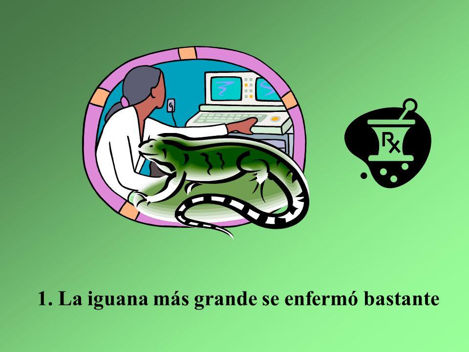 Arriba en las montañas vivían siete iguanas Y todas muy sanas – ¡pero mira lo que pasó! 1
