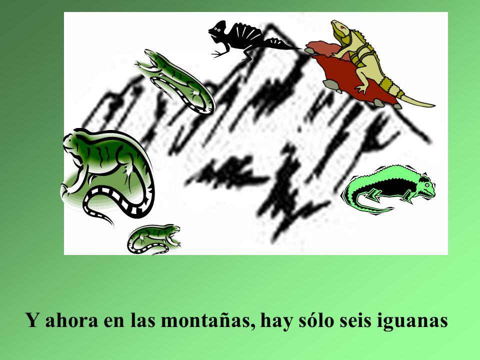 1. La iguana más grande se enfermó bastante