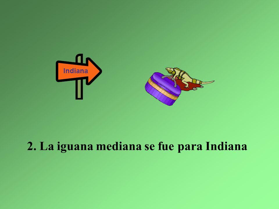 Y ahora en las montañas, hay sólo seis iguanas