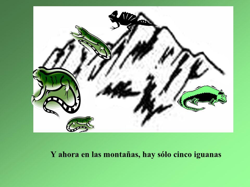 2. La iguana mediana se fue para Indiana Indiana