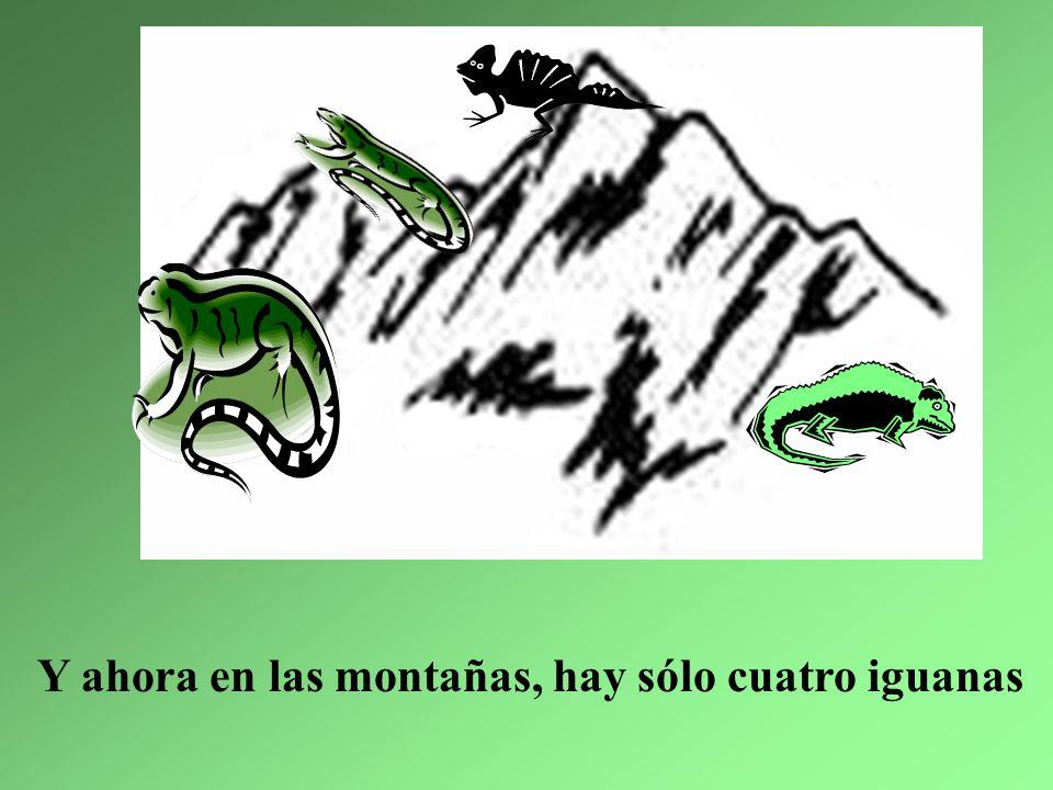 3. La iguana más pequeña fue en busca de su cena