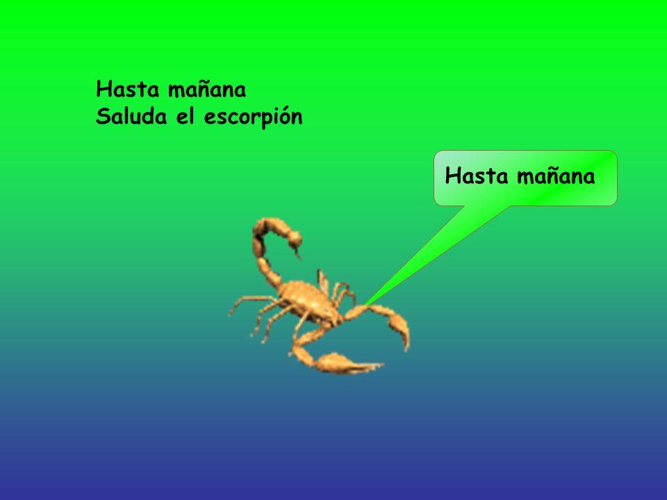 Hasta mañana Saluda el escorpión