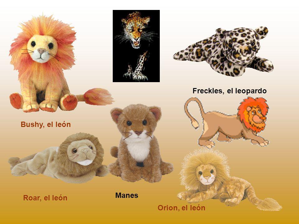 Roar, el león Bushy, el león Freckles, el leopardo Orion, el león Manes
